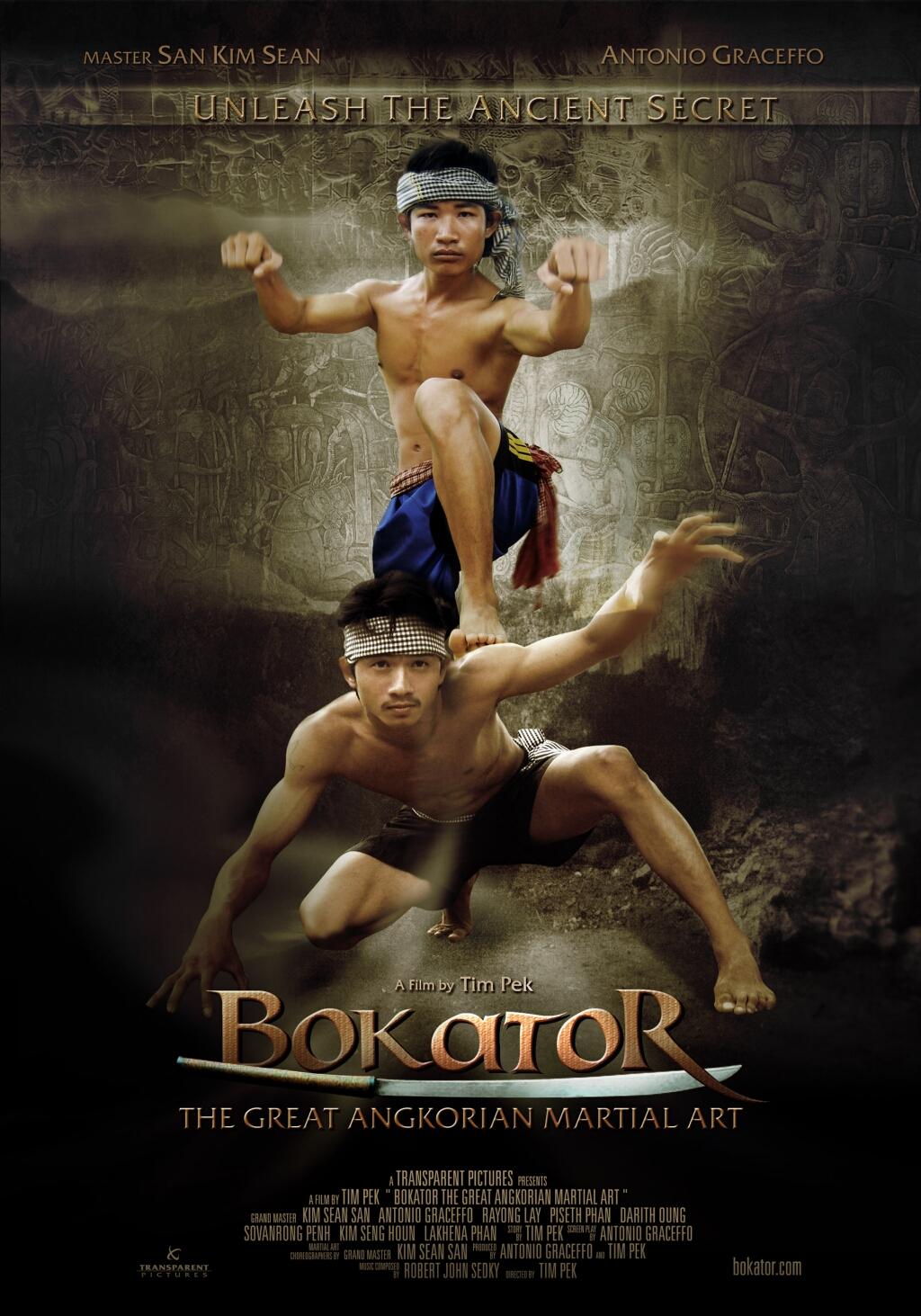 Бокатор DVD