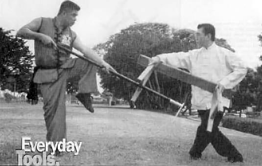 Боевые искусства Южного Китая