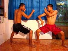 Ready? Fight!