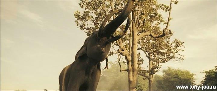 Кадр из фильма Онг-Бак 2 (Ong-Bak 2) - 20