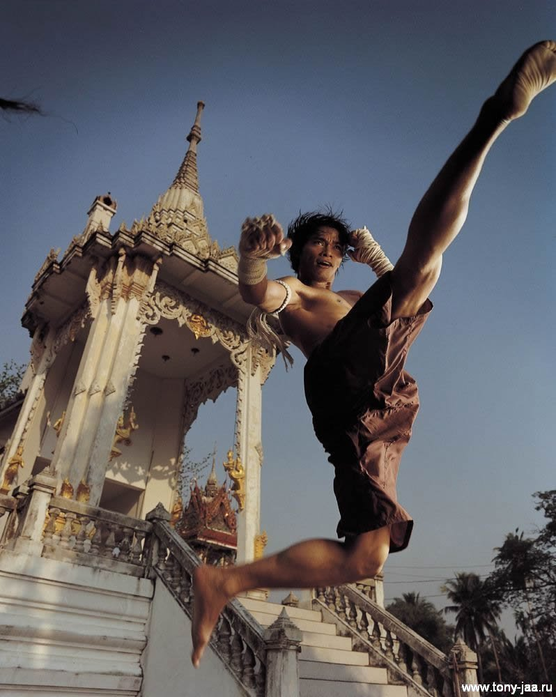 Тони Джаа (Tony Jaa) - Удар ногой в прыжке