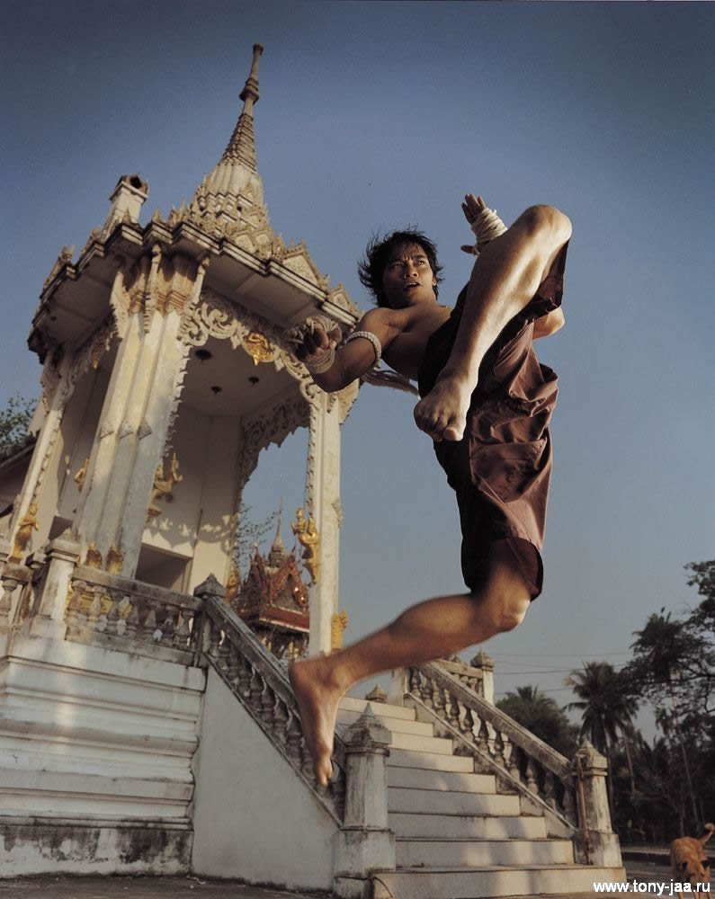 Тони Джаа (Tony Jaa) - Удар в воздухе