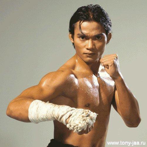 Тони Джаа (Tony Jaa) - Боевая стойка