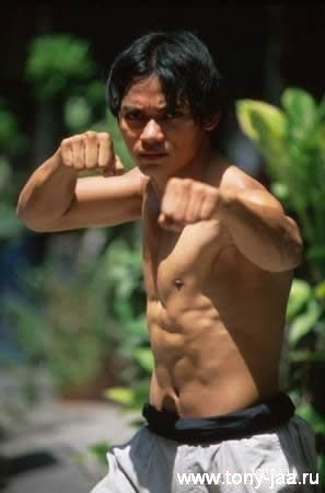 Тони Джаа (Tony Jaa) в боевой стойке